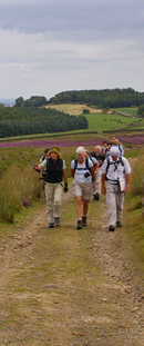 Crossing Arnagill Moor/from a photo by Arnold Underwood/23rd Aug 2009